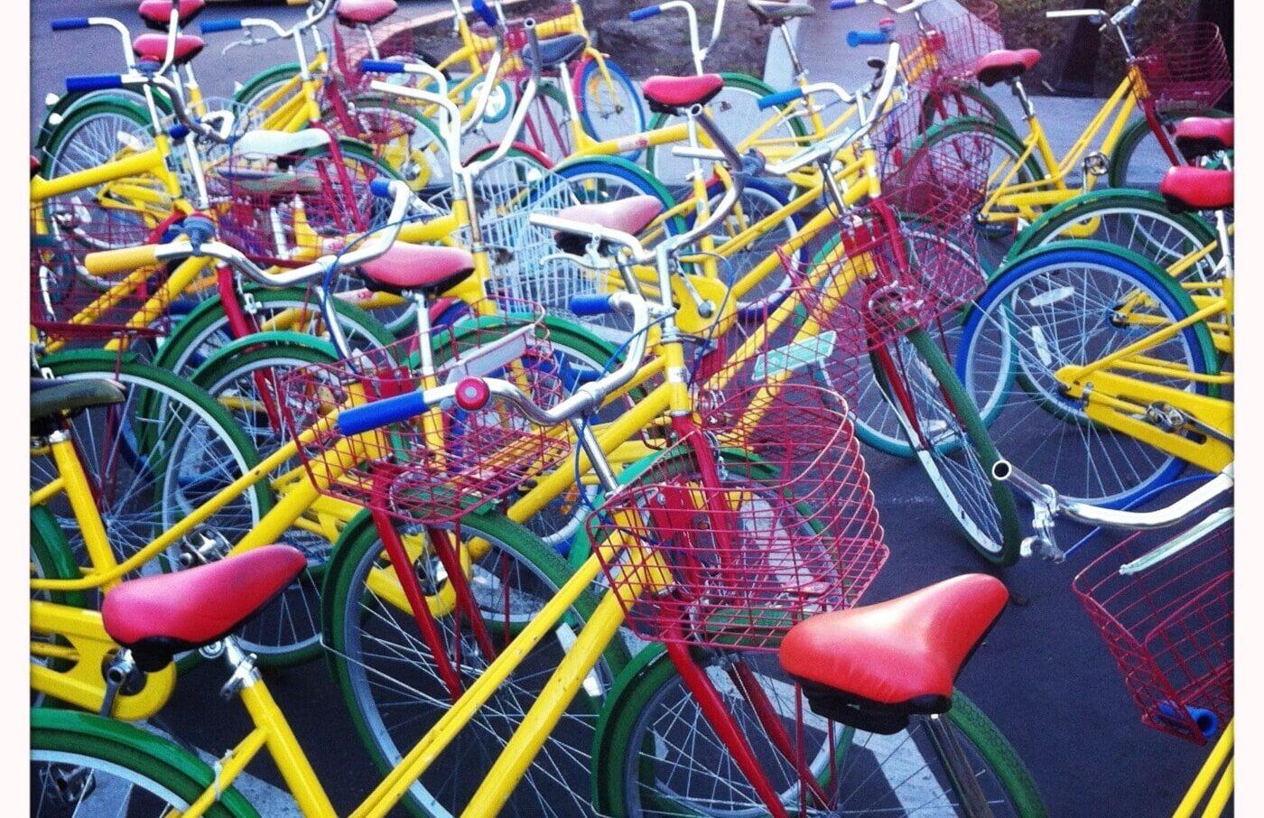 gule cykler